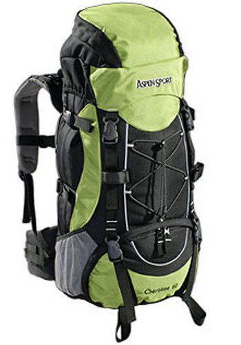 Image Of A Green And Black Backpack